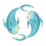 Fische erwachsen