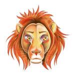 Löwe erwachsen
